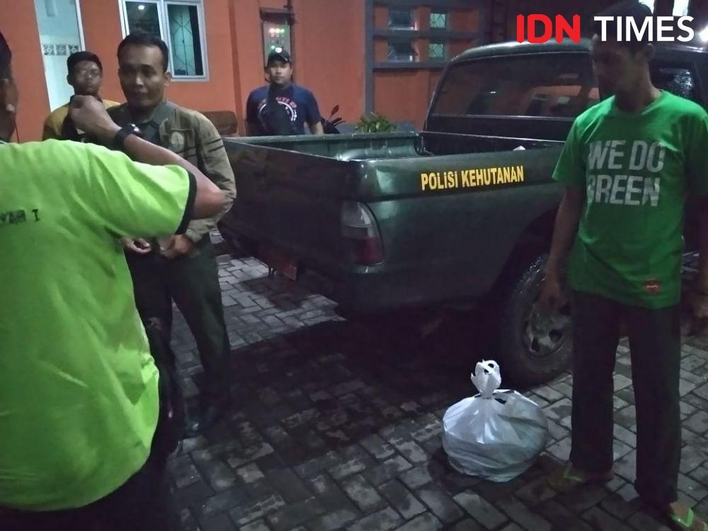 Petugas BKSDA Bongkar Penyelundupan Ratusan Burung Kacer di dalam Pesawat