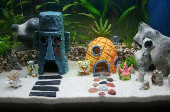 5 Ide Hiasan Akuarium Yang Bisa Kamu Coba Sendiri Di Rumah