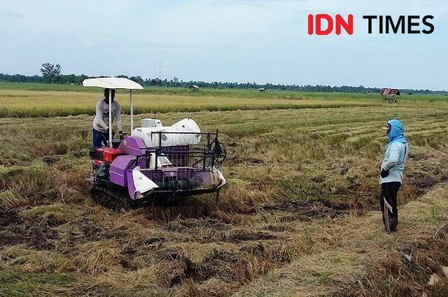 Ini Program KUR Pertanian untuk Mendorong Pertumbuhan Ekonomi
