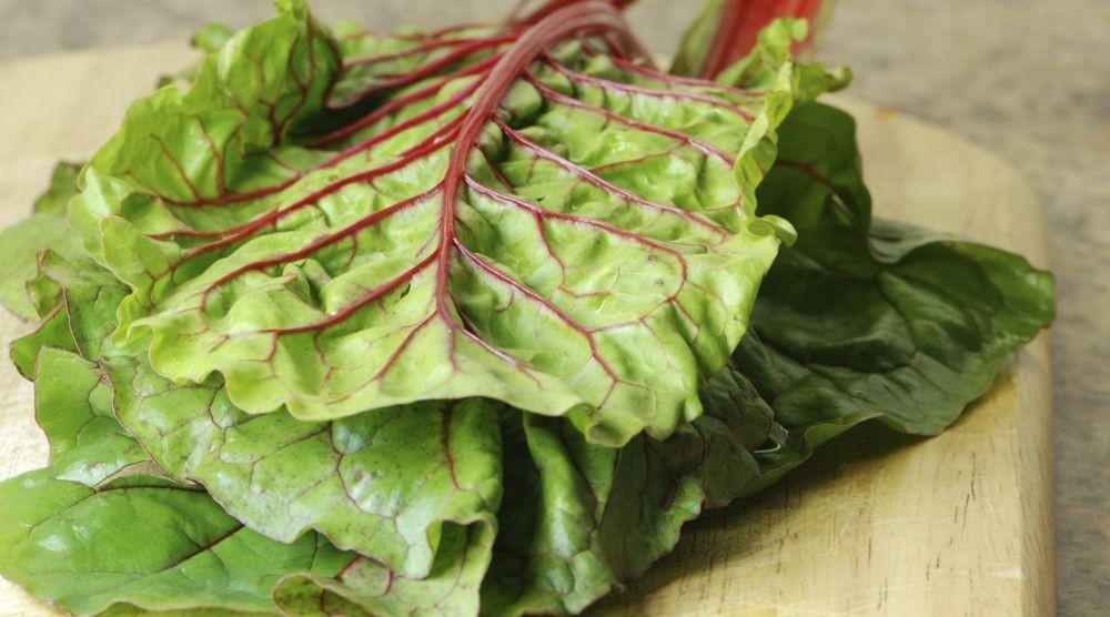 10 Sayuran yang Sering Kita Makan, Tapi Ternyata Mengandung Racun