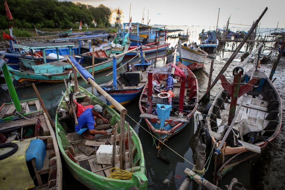 Pasca OTT Menteri KKP, Harga Benih Lobster Bayah Lebak Anjlok