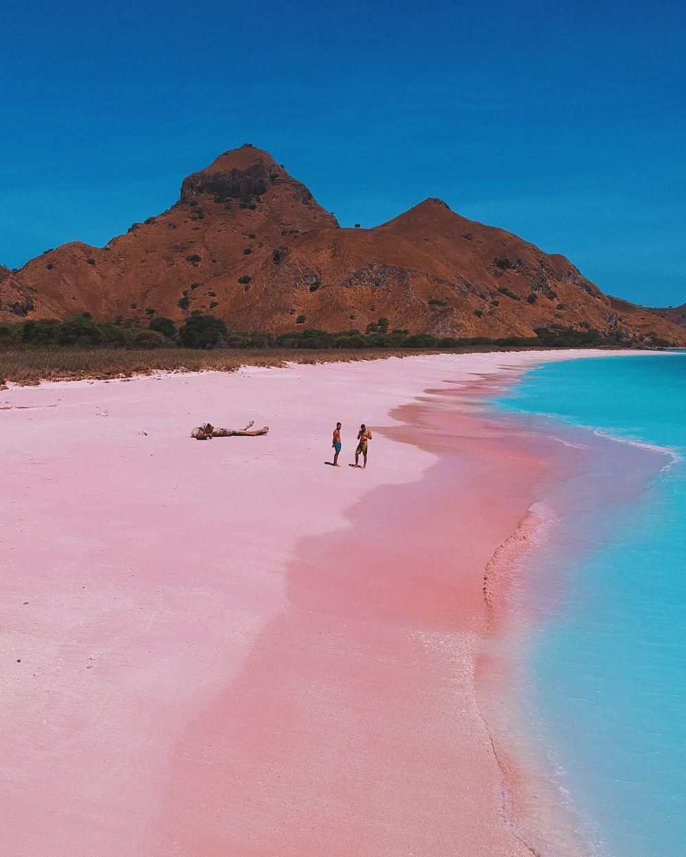 10 Pantai Pink Terbaik di Dunia, Ada yang dari Indonesia Lho!