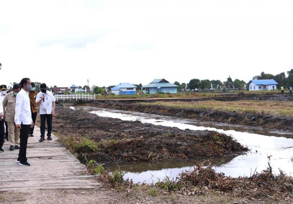 Blak-blakan! Jokowi Ungkap Pertimbangan Jika Pemerintah Impor Beras