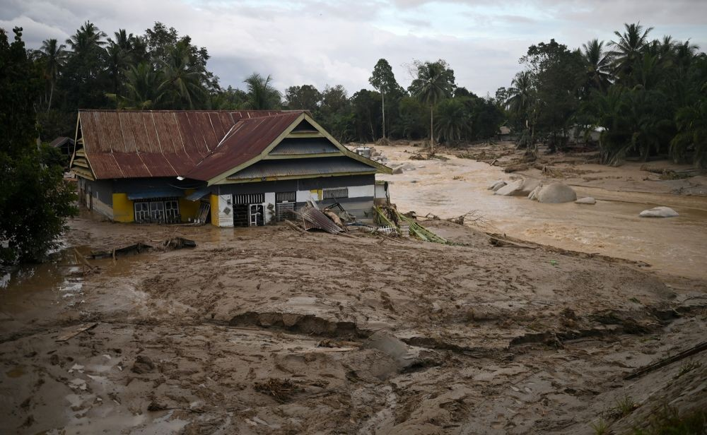 Bantu Korban Banjir di Luwu Utara, Evi Masamba Jual Mobil Alphard