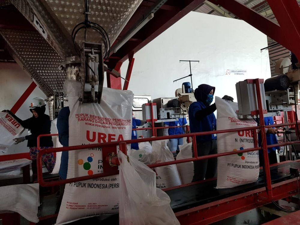 Ketersediaan Pupuk Subsidi Dukung Musim Tanam di Subang