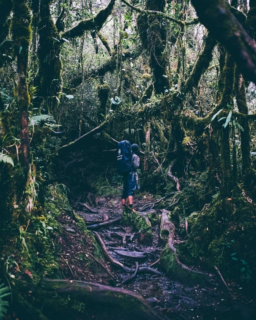 10 Tempat Wisata Paling Angker di Sumatra Barat, Bikin Merinding!