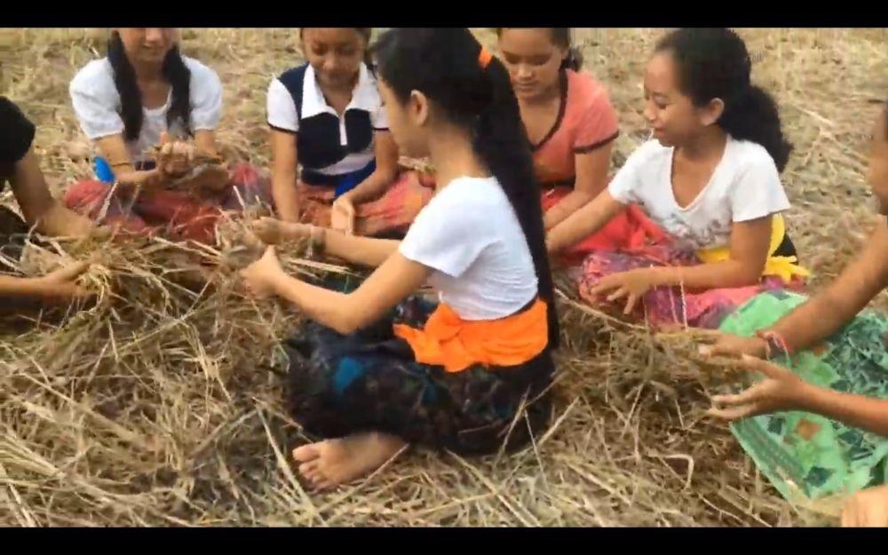 Serunya Megandu, Permainan Tradisi Asal Tabanan Setelah Panen di Sawah