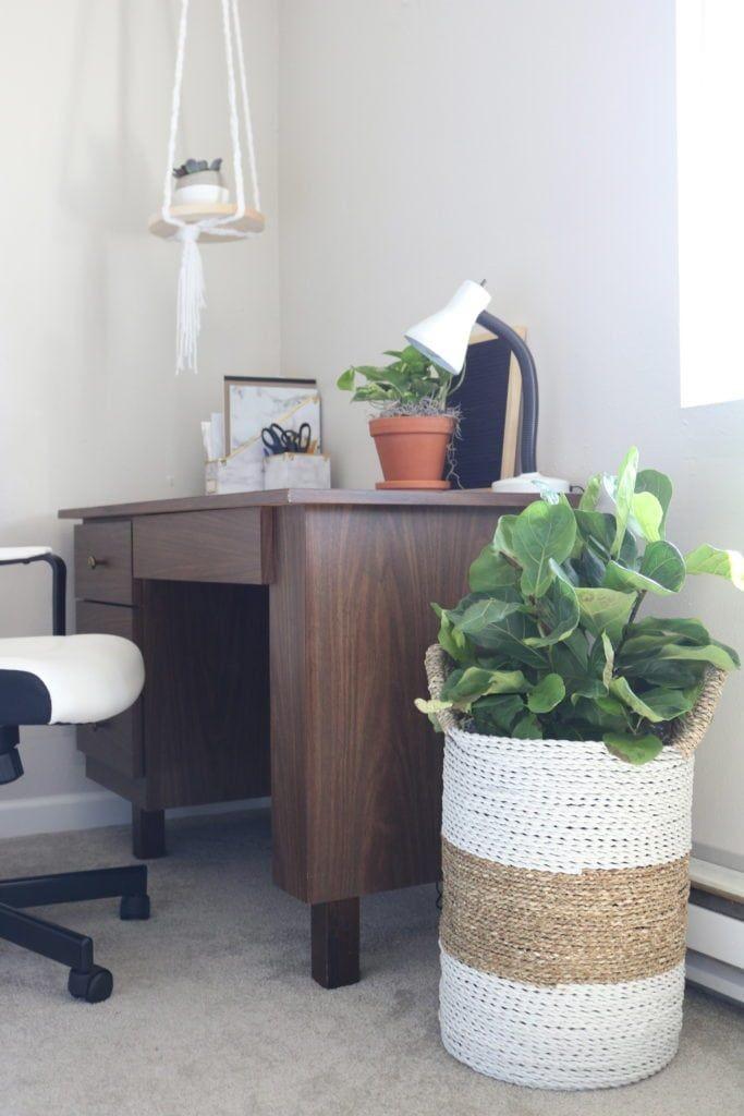 9 Ide Dekorasi Ruangan dengan Tanaman di Pot Anyaman