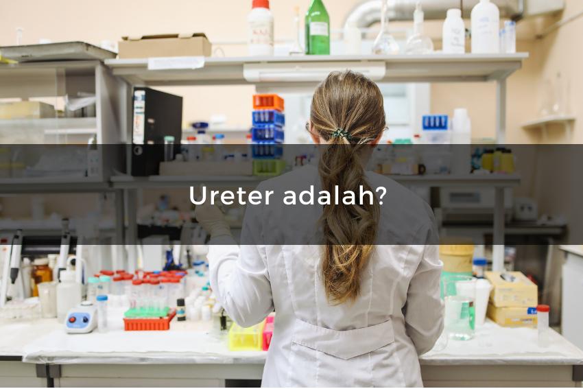 [QUIZ] Kuis Tentang Biologi Ini Bisa Menentukan Kamu Cocok Kuliah Kedokteran atau Gak